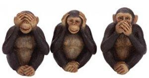 MonkeySeeMonkeyDo_zps0a30dff9.jpg